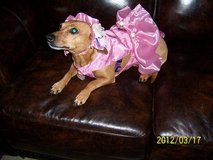 Doggie ballet dress - Tutu in Conroe, Texas